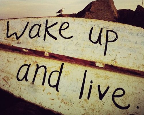 Qu'est-ce qui fait une vie réussie? *cliquez sur la diapositive pour lire l'article